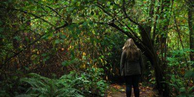 Ein Mädchen steht vor einem dichten Blätterwald mit dem Rücken zum Betrachter.