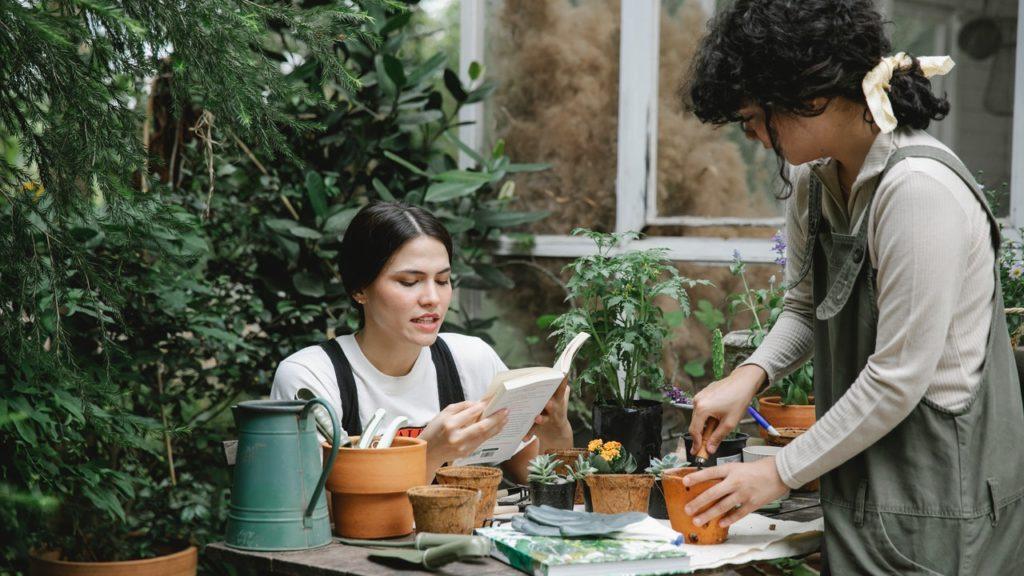 Zwei Frauen topfen Pflanzen ein